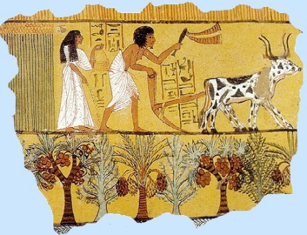Harvest in Egypt, from the tomb of Sennedjem, Thebes, ca. 1200 BC