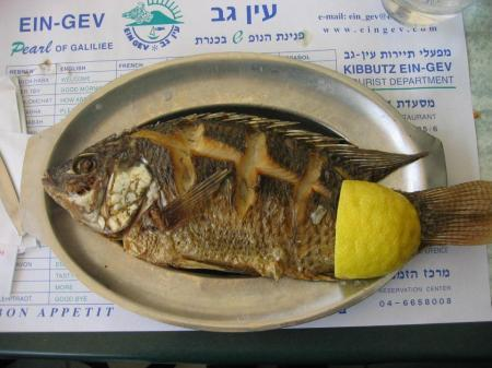 Lunch of St. Peter's fish at the Ein Gev kibbutz restaurant, Israel.