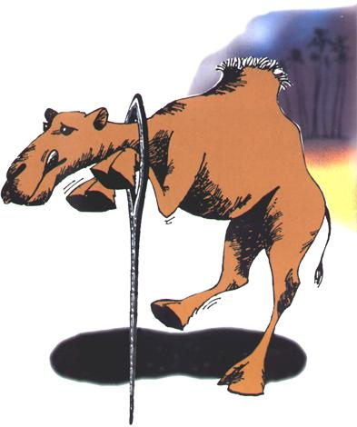 18. CamelNeedle