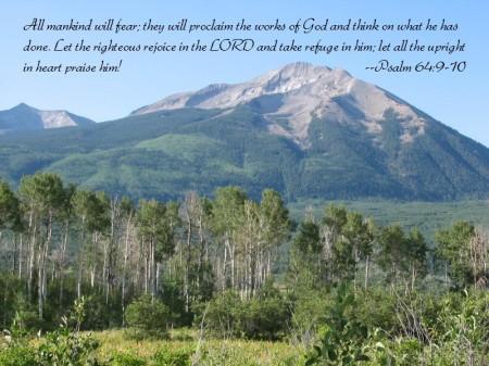 In the Lord I take refuge . . .