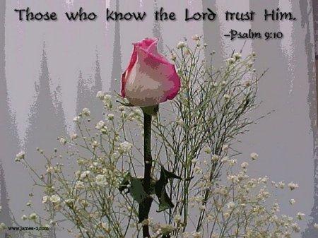 9. psalm9,10 rose