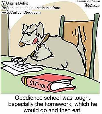10. dog obedience cartoon