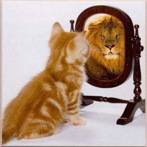 26. kitten sees lion
