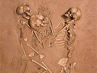 14. skeletons in the desert