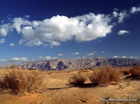 33.Sinai desert