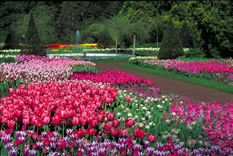 High Quality Longwood Gardens.  Http://www.appraisaltrend.com/xSites/Appraisers/AppraisalTrendLLC/Content/UploadedFiles/ LongwoodGardens
