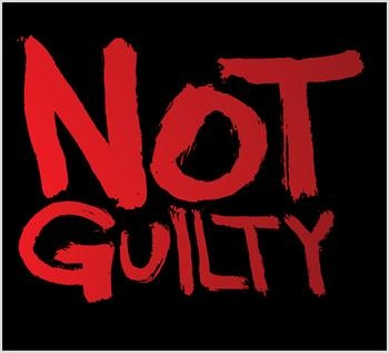 "guilty or not guilty To be called to serve on a jury is no small thing when the answer to the question "" guilty or not guilty"" has the power to change the course of a."