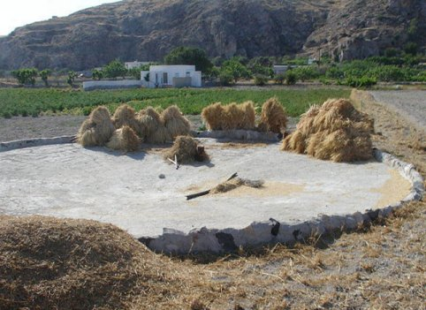 553 2 chronicles 3 dwelling in the word for Threshing floor
