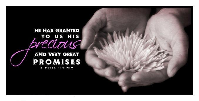 Precious Promises Dwellinginthewordfileswordpress 2012 01 2 Peter1 4 Sm