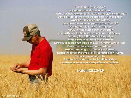 I28 farmer