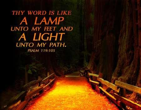 p119 lamp to my feet