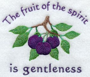 2Tim2 gentleness