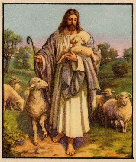 I40 shepherd