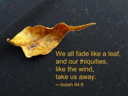 I64 fade like a leaf