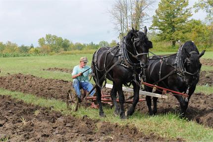 L9 plowing