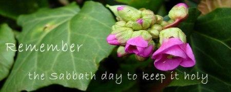Jer17 sabbath