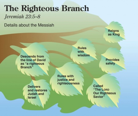 Jer23 righteous branch