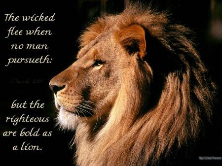 Pr28 bold-as-a-lion