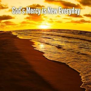Job8 mercy