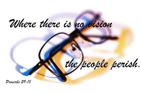 Pro29 glasses