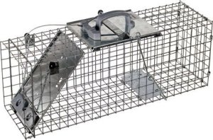 havahart humane live animal trap