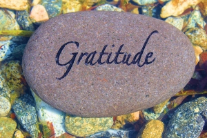 Job20 gratitude