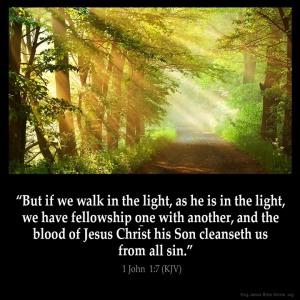 Job24 walk in light