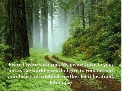 john-14-27-my-peace-i-leave-with-you