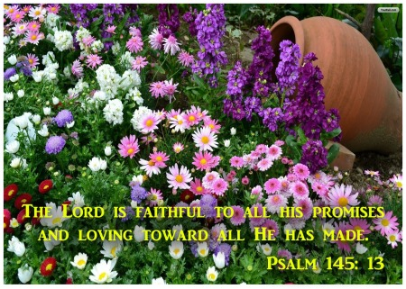 Psalm145_13 flowers