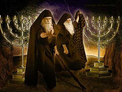 Rev11 two-witnesses