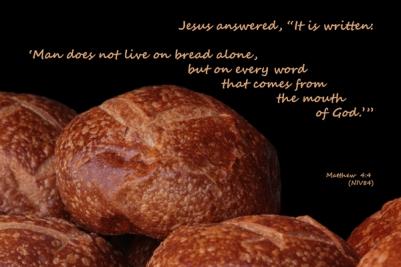 Bible Jesus quotes OT