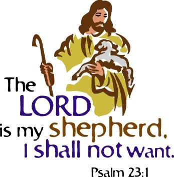 P27 shepherd