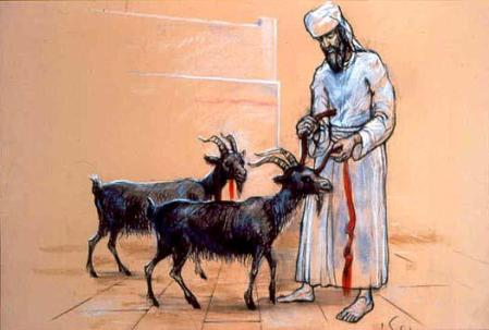 Two goats. The first goat is to be sacrificed and its blood sprinkled upon the mercy seat (their sins are forgiven) . . .