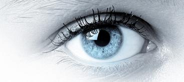 Deu19 eye