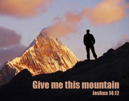 Josh14 mountain