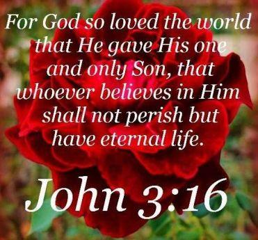 Prov6 John 3.16