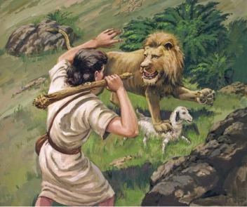 1Sam17 lion