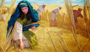 1Sam22 Ruthgleaning