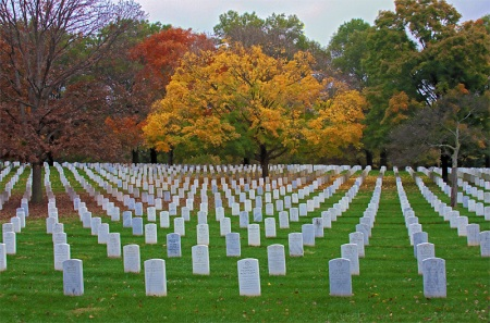 """Oh, how the mighty are fallen,"" cried David for Saul and Jonathan, war-time casualties. (Arlington National Cemetery)"