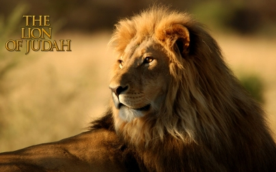 David Lion of Judah