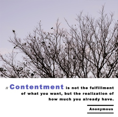Eccle7 contentment