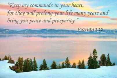 Ps128 prosperity
