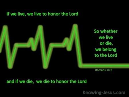 Rom14 live or die