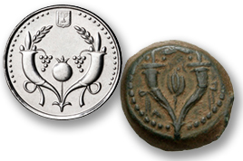 ancient and modern coins of Israel
