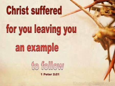 1p2-christ-suffered