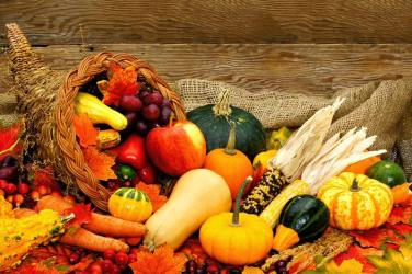 hosea9-fall-harvest