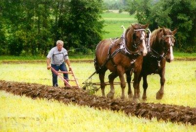 luke9-plow
