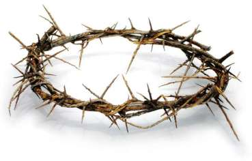 luke11-crown-of-thorns