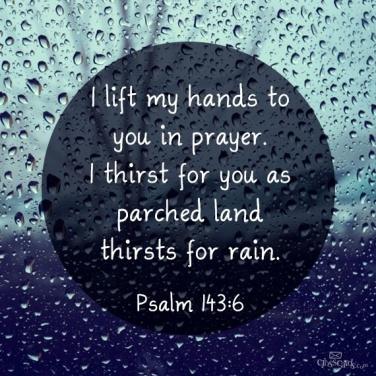ps143-rain